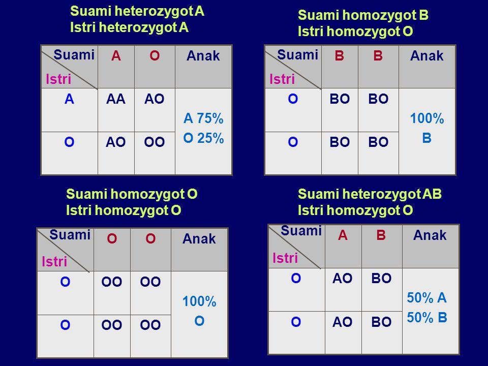 OO AO. O. A 75% O 25% AA. A. Anak. Istri. Suami. Suami heterozygot A. Istri heterozygot A.