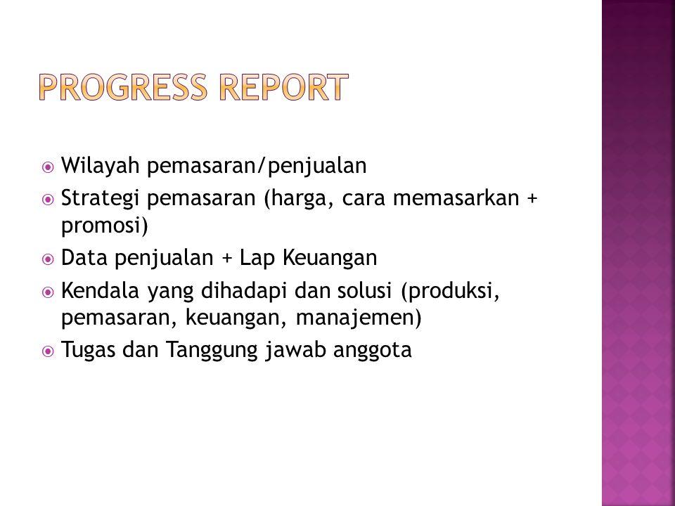 Progress report Wilayah pemasaran/penjualan
