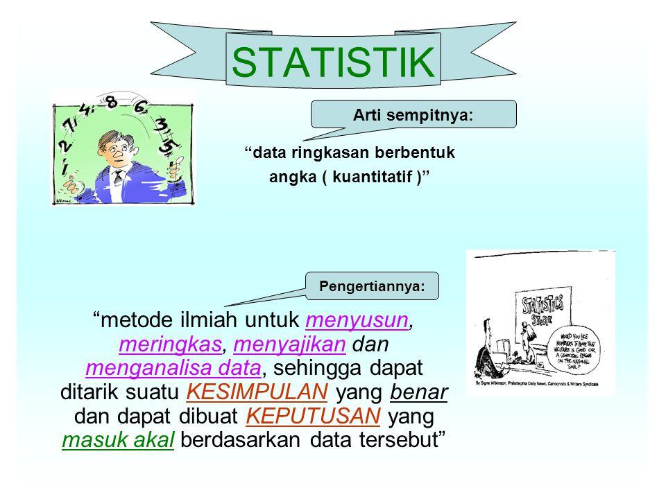 data ringkasan berbentuk
