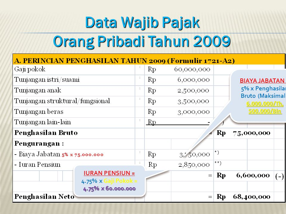 Data Wajib Pajak Orang Pribadi Tahun 2009