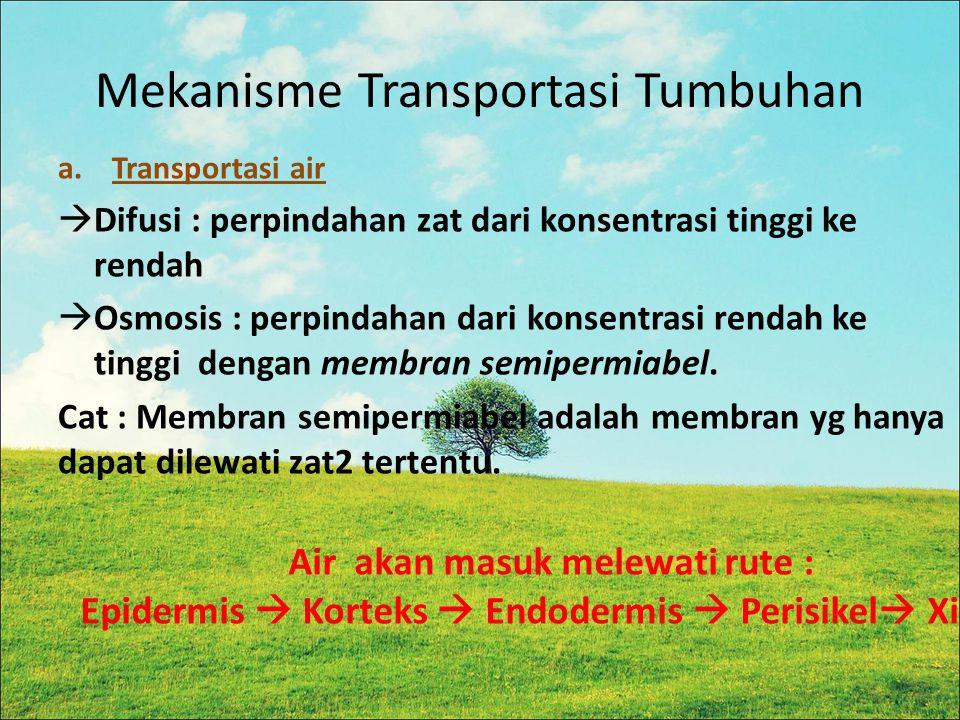 Mekanisme Transportasi Tumbuhan