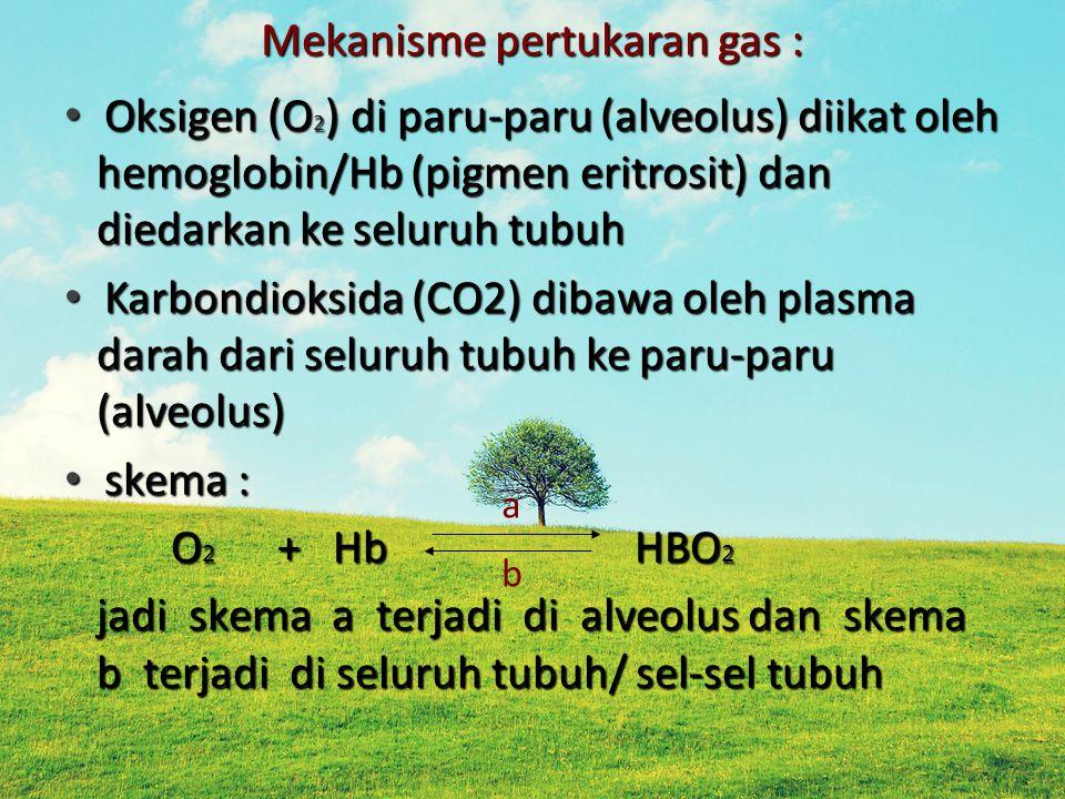 Mekanisme pertukaran gas :