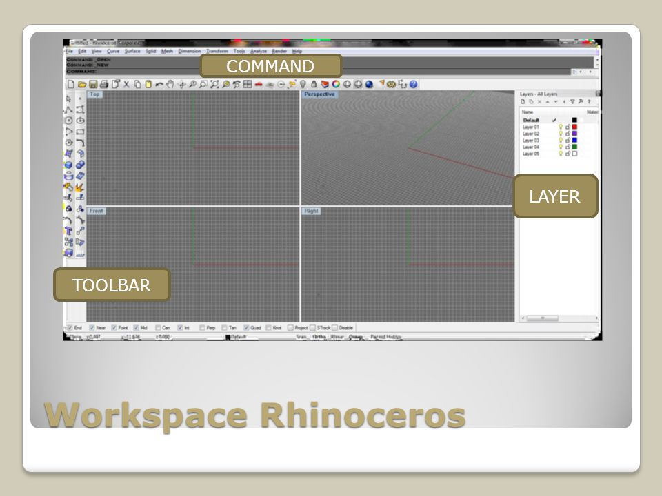 COMMAND LAYER TOOLBAR Workspace Rhinoceros