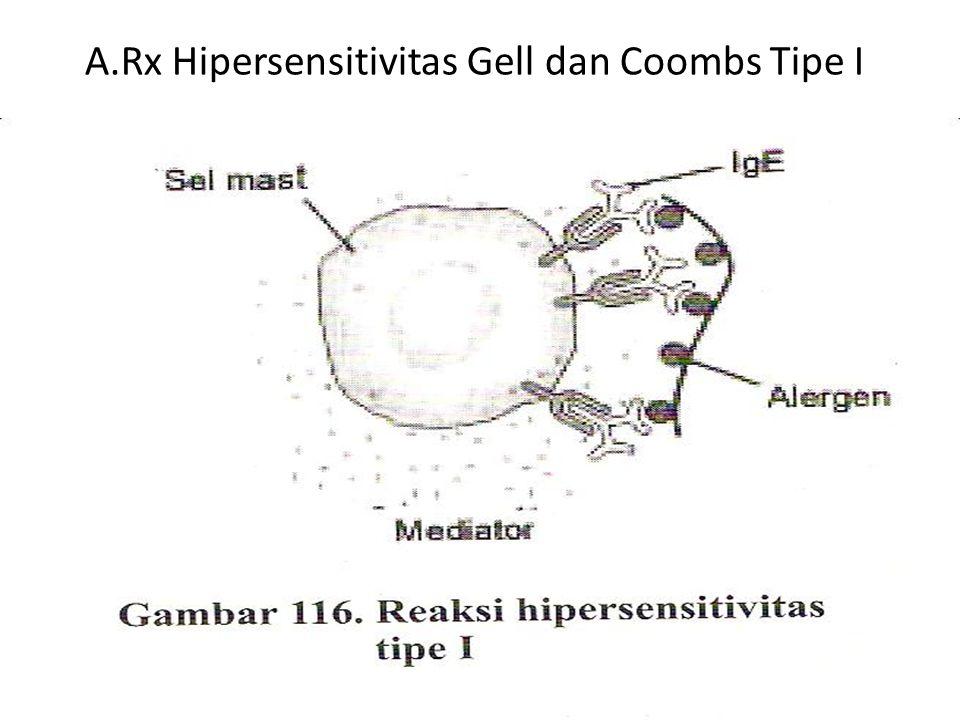 A.Rx Hipersensitivitas Gell dan Coombs Tipe I