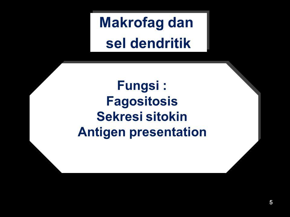 Makrofag dan sel dendritik