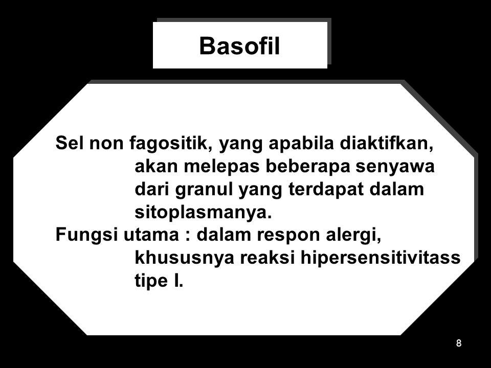 Basofil Sel non fagositik, yang apabila diaktifkan,