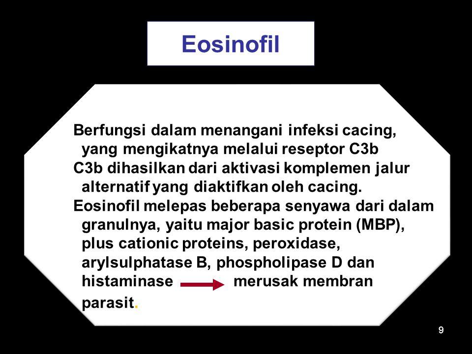 Eosinofil Berfungsi dalam menangani infeksi cacing,