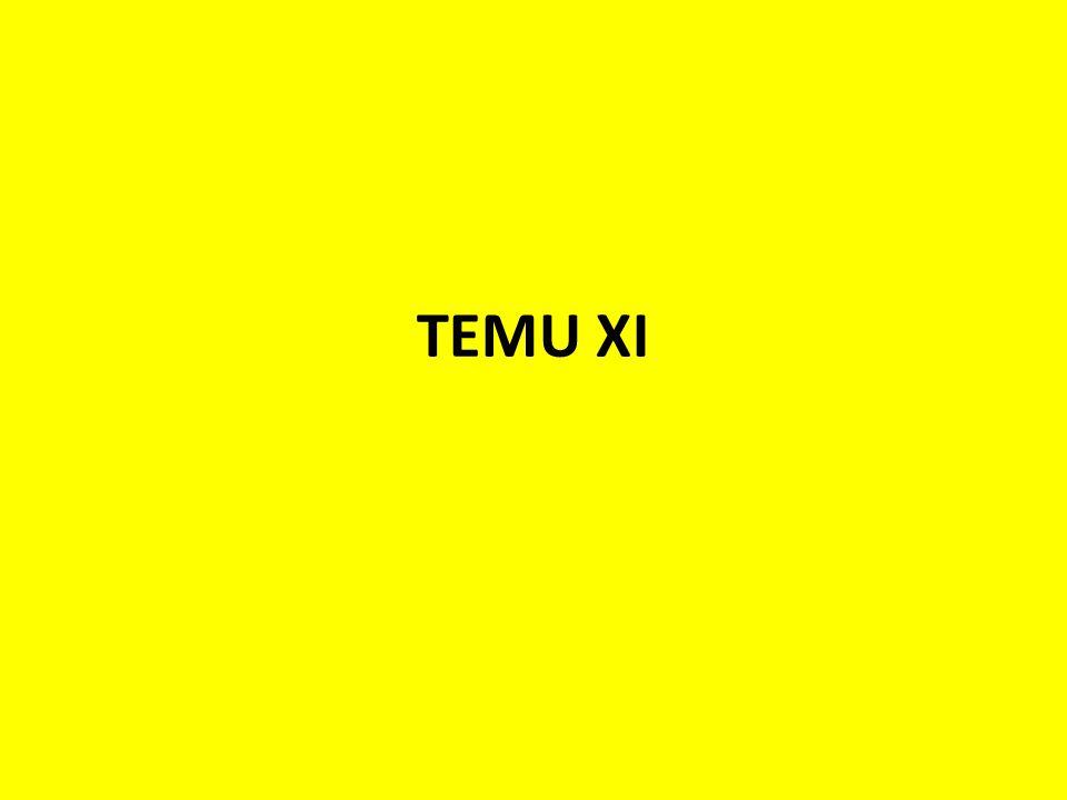 TEMU XI