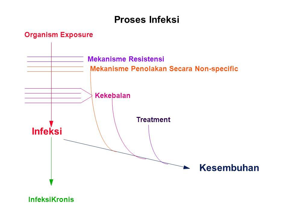 Proses Infeksi Infeksi Kesembuhan Organism Exposure
