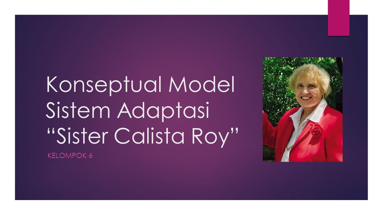 Konseptual Model Sistem Adaptasi Sister Calista Roy