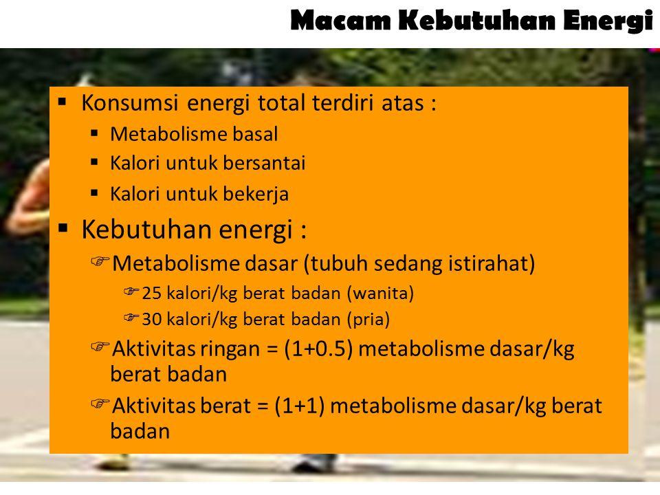 Macam Kebutuhan Energi