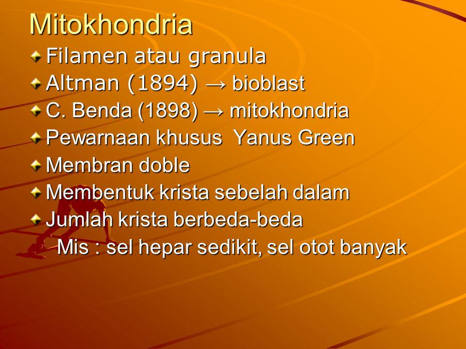 Mitokhondria Filamen atau granula Altman (1894) → bioblast