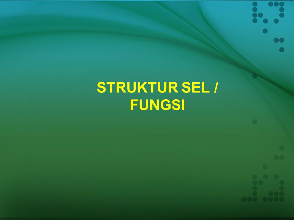 STRUKTUR SEL / FUNGSI