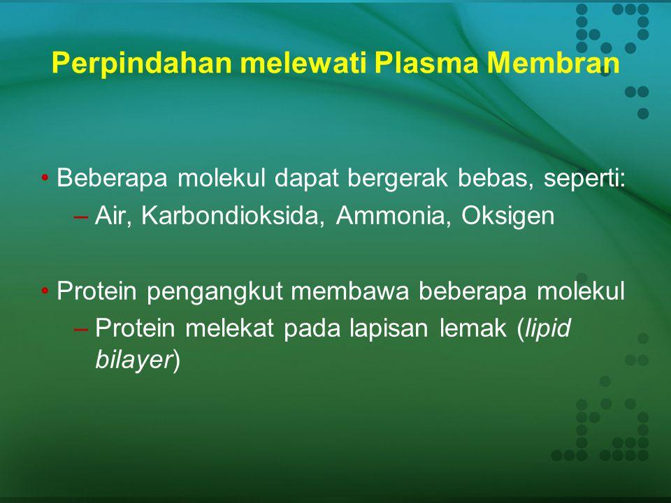 Perpindahan melewati Plasma Membran
