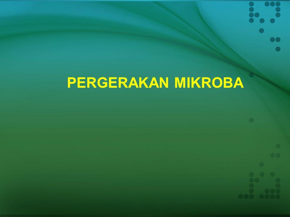 PERGERAKAN MIKROBA