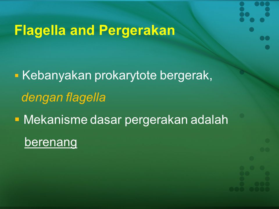 Flagella and Pergerakan