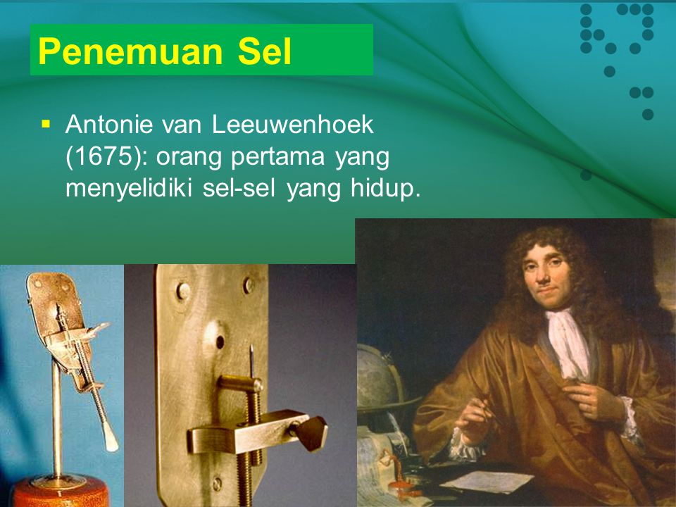 Penemuan Sel Antonie van Leeuwenhoek (1675): orang pertama yang menyelidiki sel-sel yang hidup.