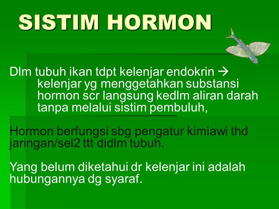 SISTIM HORMON