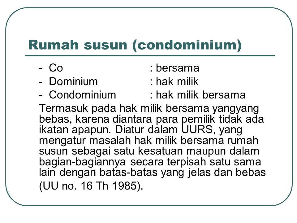 Rumah susun (condominium)