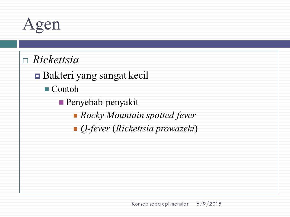 Agen Rickettsia Bakteri yang sangat kecil Penyebab penyakit