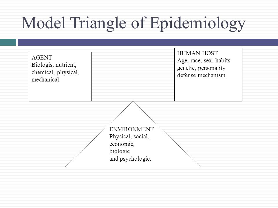 Model Triangle of Epidemiology