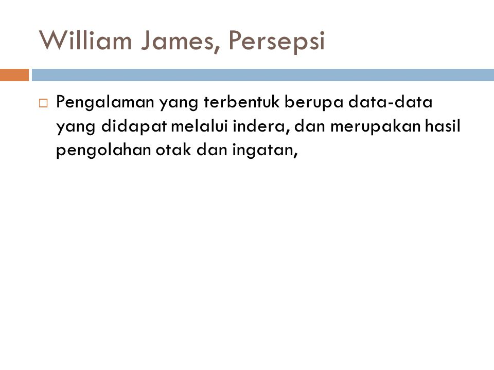 William James, Persepsi