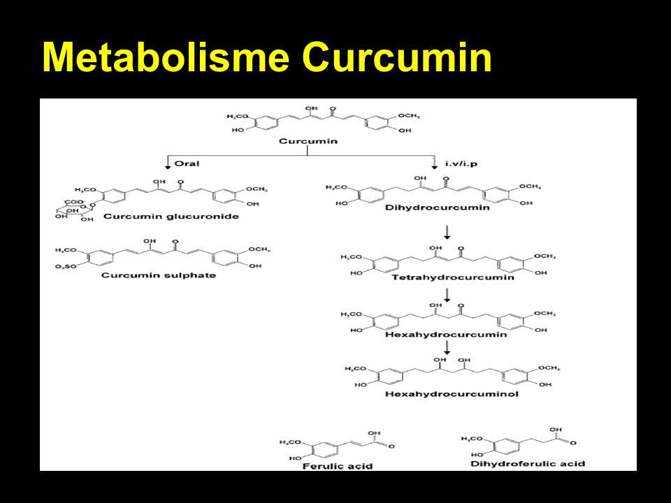 Metabolisme Curcumin