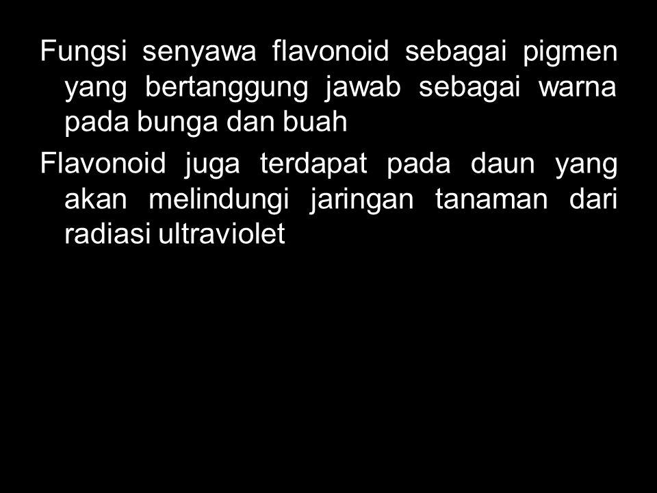 Fungsi senyawa flavonoid sebagai pigmen yang bertanggung jawab sebagai warna pada bunga dan buah