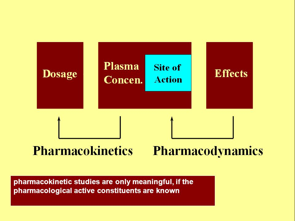 pharmacokinetic studies are only meaningful, if the