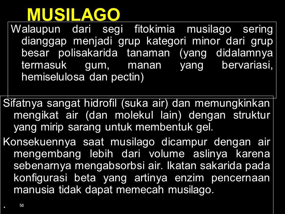 MUSILAGO
