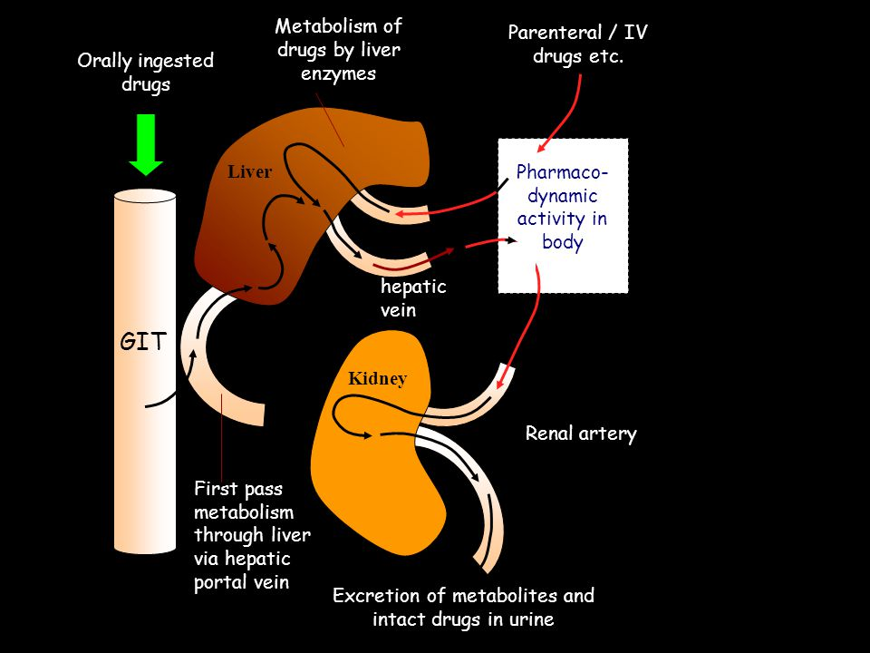 GIT Metabolism of drugs by liver enzymes Parenteral / IV drugs etc.