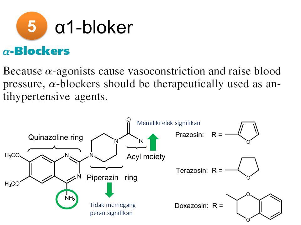 5 α1-bloker Memiliki efek signifikan Tidak memegang peran signifikan