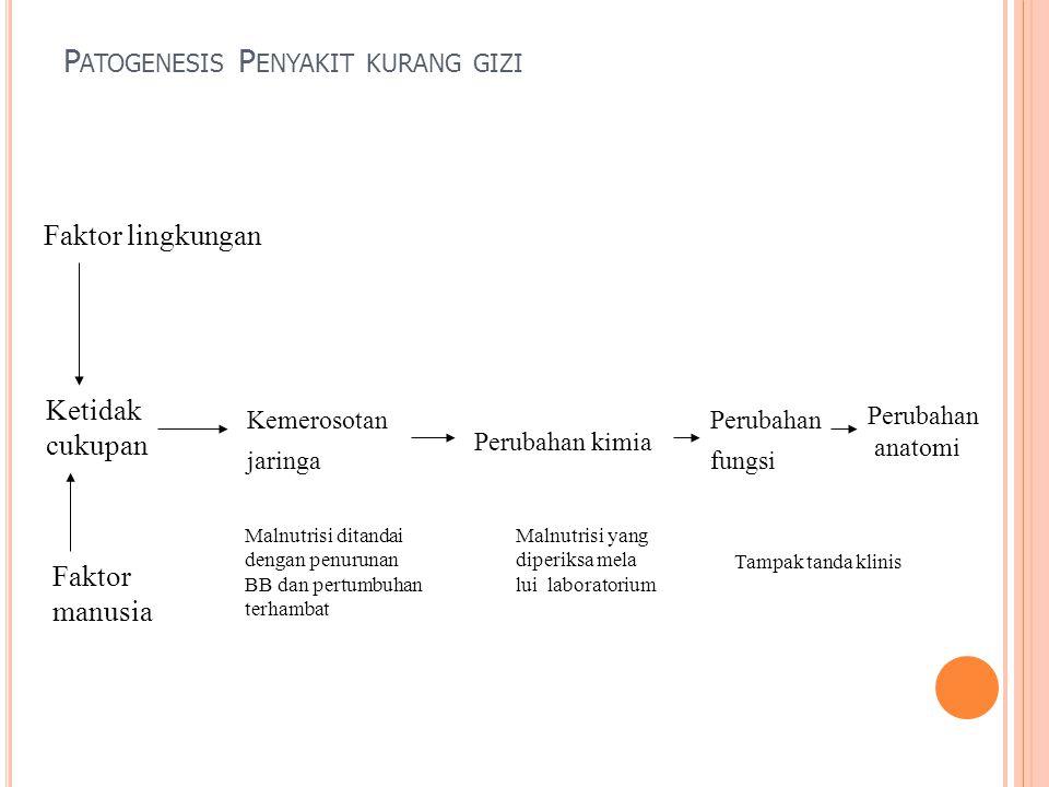 Patogenesis Penyakit kurang gizi