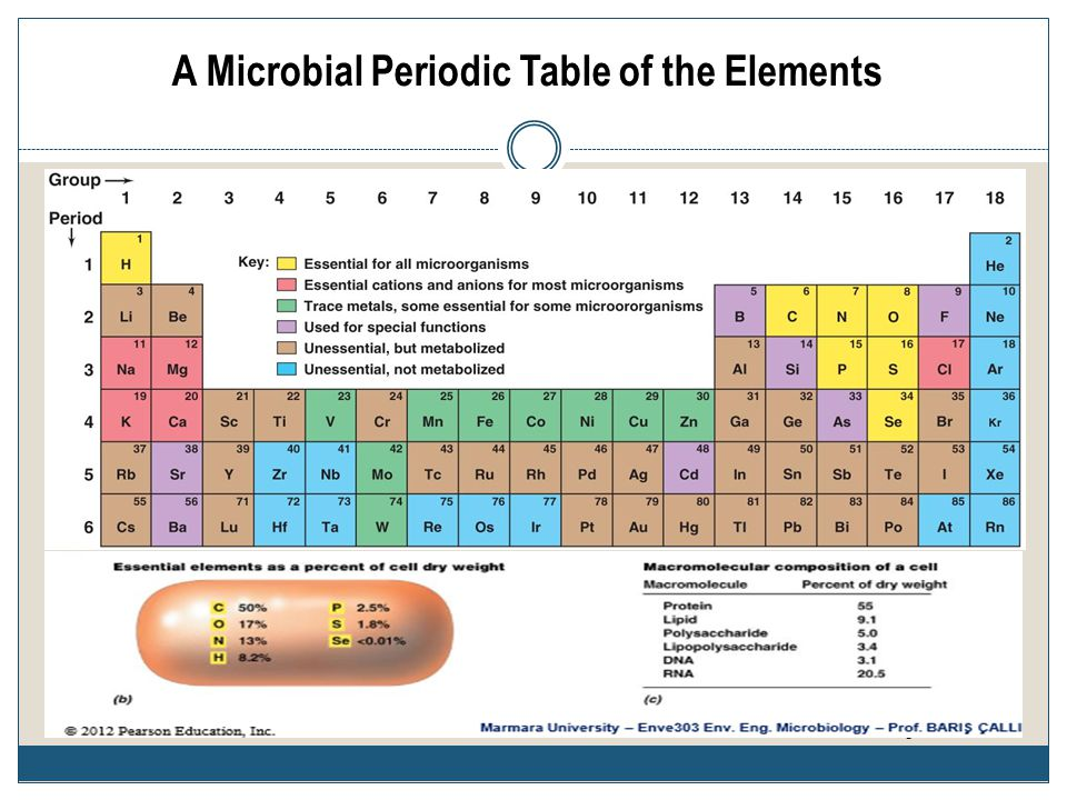 A Microbial Periodic Table of the Elements