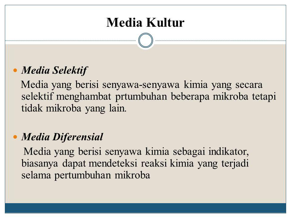 Media Kultur Media Selektif