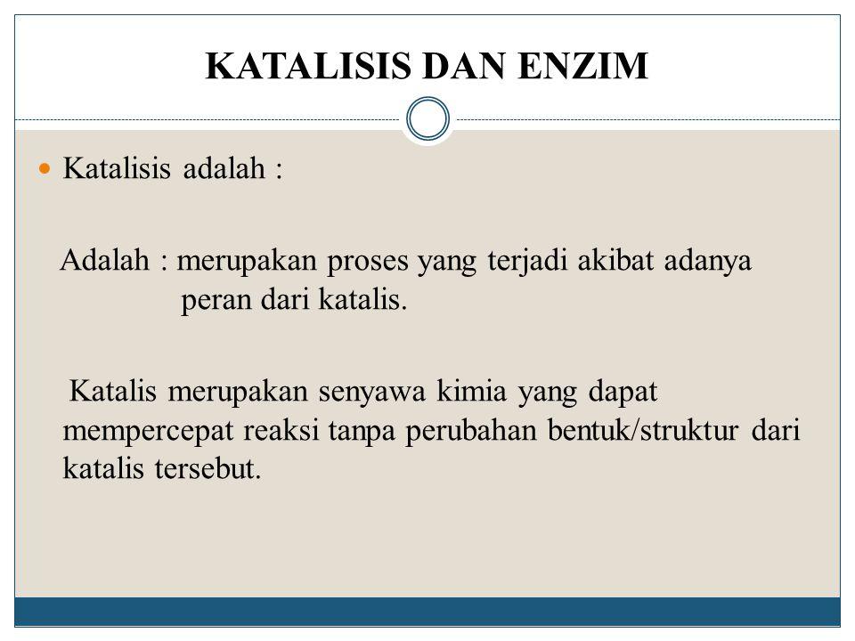 KATALISIS DAN ENZIM Katalisis adalah :