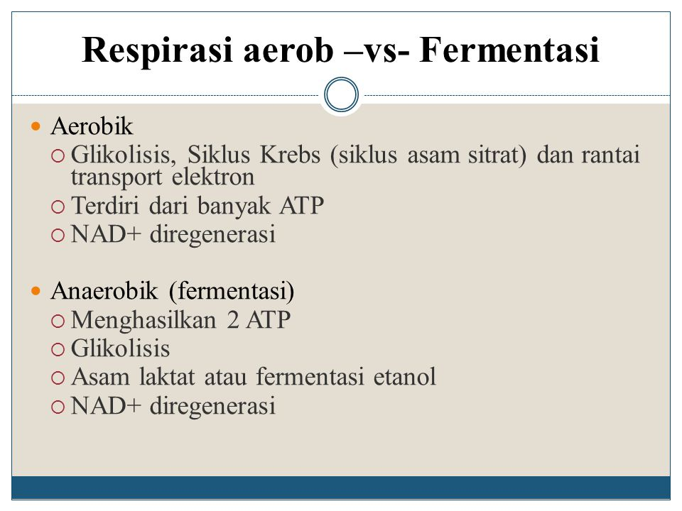 Respirasi aerob –vs- Fermentasi