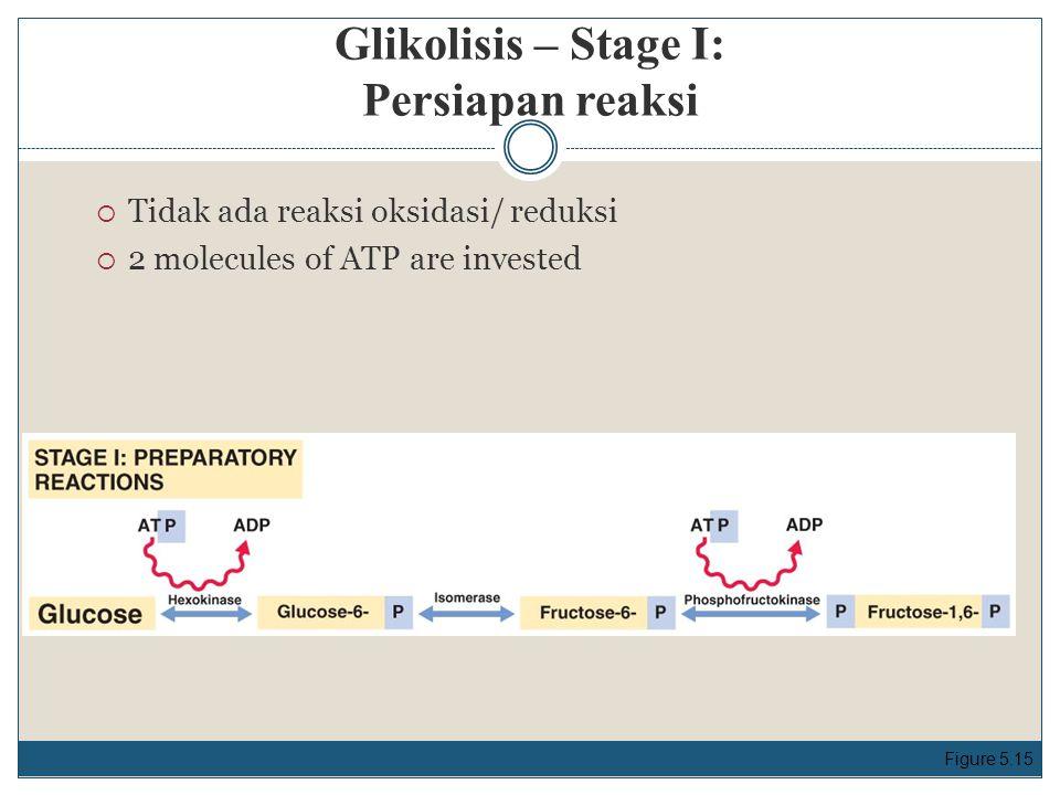 Glikolisis – Stage I: Persiapan reaksi