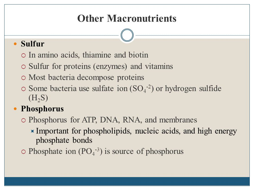 Other Macronutrients Sulfur In amino acids, thiamine and biotin