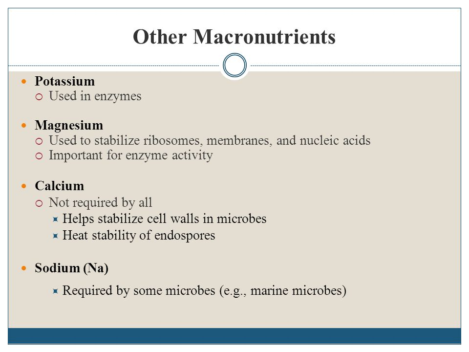 Other Macronutrients Potassium Used in enzymes Magnesium