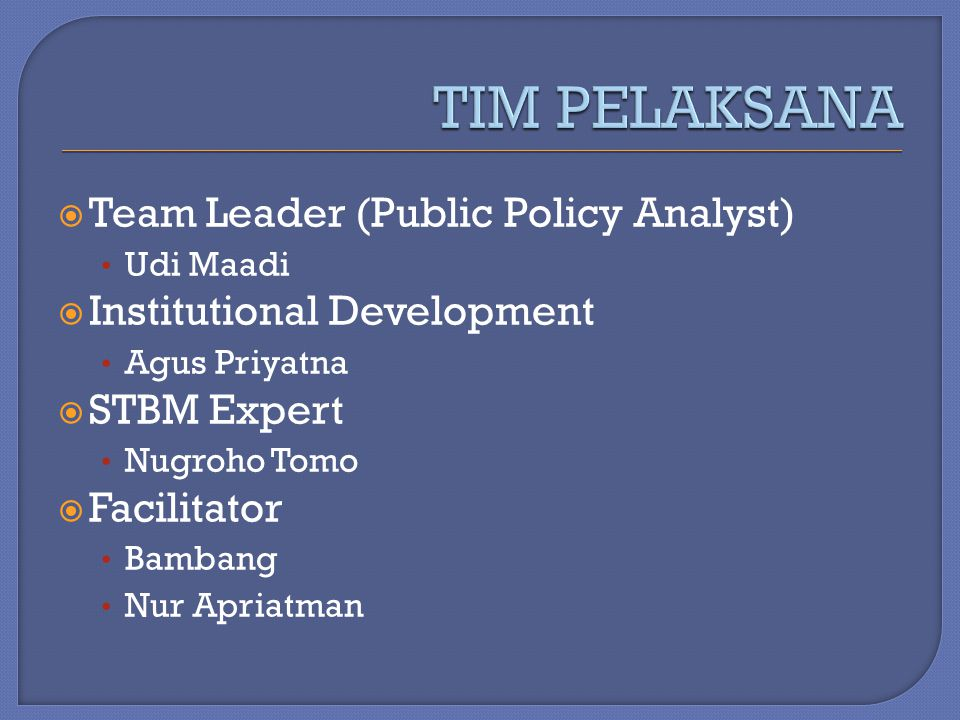 TIM PELAKSANA Team Leader (Public Policy Analyst)