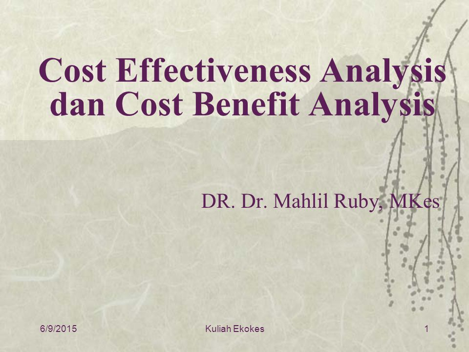 Cost Effectiveness Analysis dan Cost Benefit Analysis