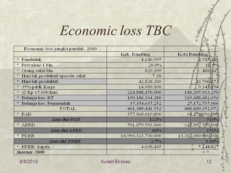 Economic loss TBC 4/16/2017 Kuliah Ekokes