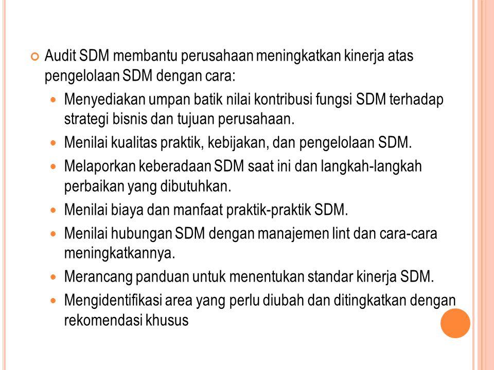 Audit SDM membantu perusahaan meningkatkan kinerja atas pengelolaan SDM dengan cara: