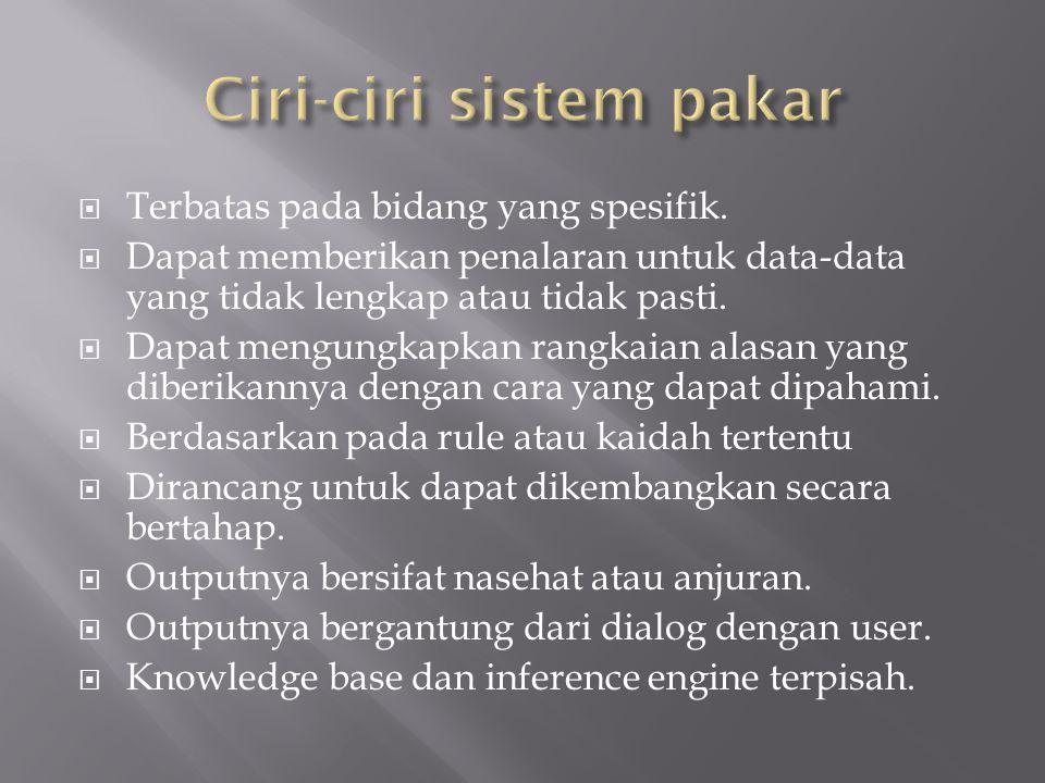 Ciri-ciri sistem pakar