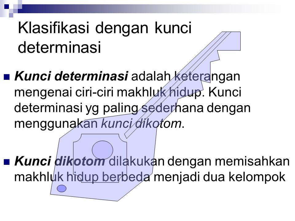 Klasifikasi dengan kunci determinasi