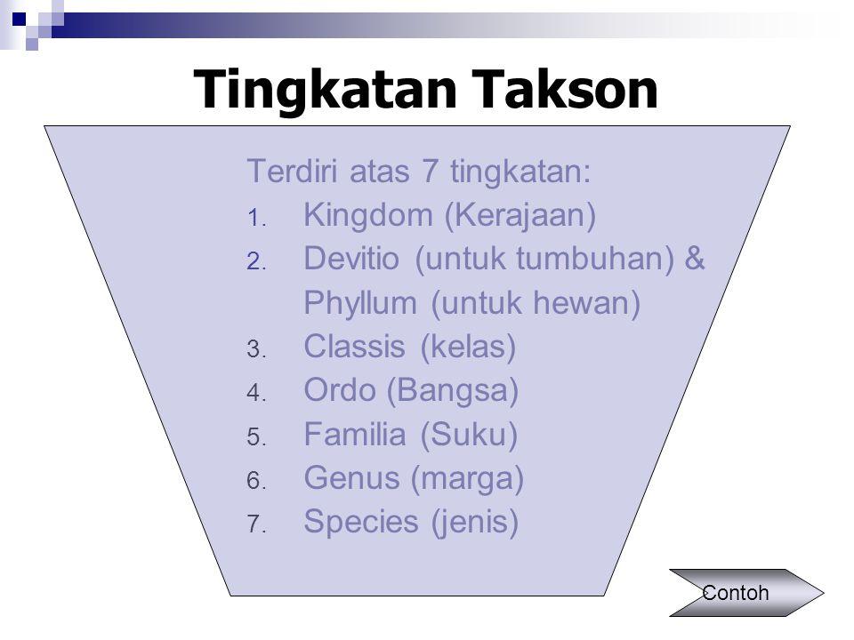 Tingkatan Takson Terdiri atas 7 tingkatan: Kingdom (Kerajaan)
