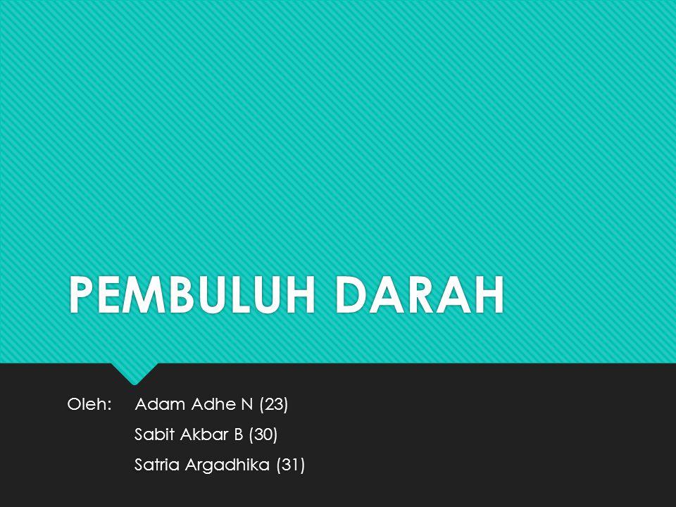 Oleh: Adam Adhe N (23) Sabit Akbar B (30) Satria Argadhika (31)