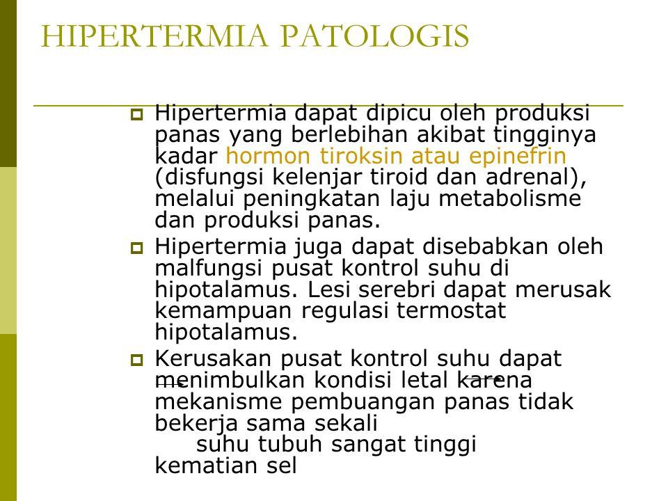 HIPERTERMIA PATOLOGIS