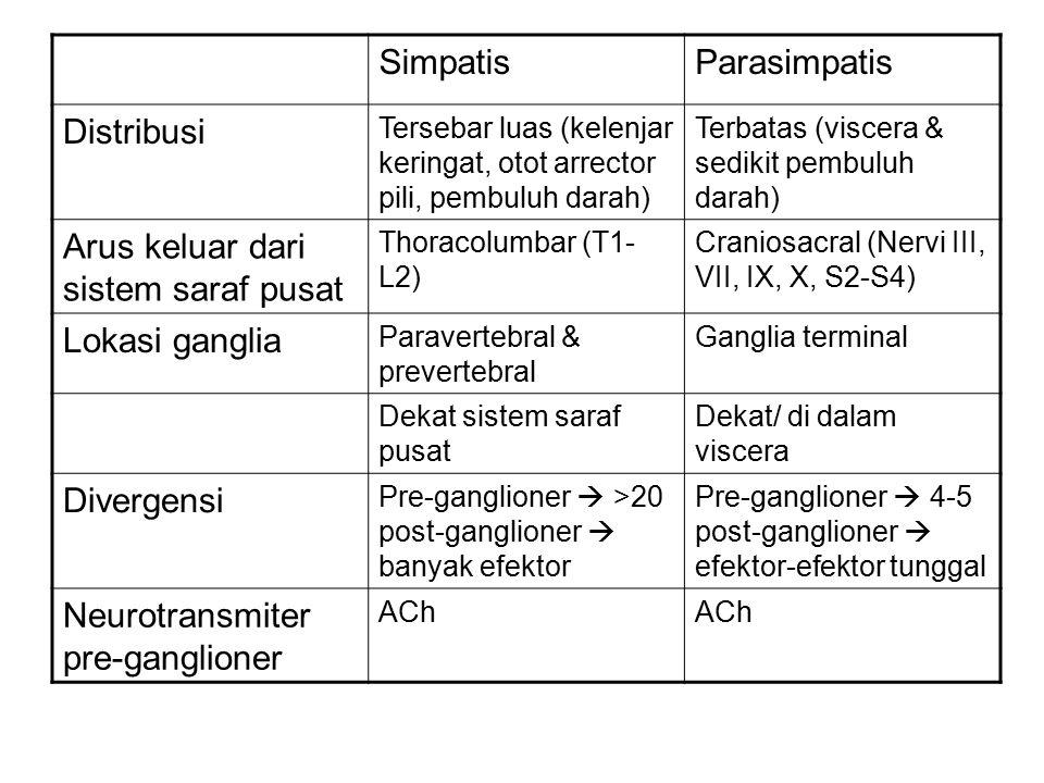 Arus keluar dari sistem saraf pusat Lokasi ganglia